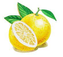 Yellow Grapefruit by Irina Sztukowski