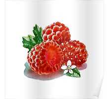 Raspberry Bunch Poster