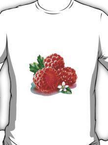 Raspberry Bunch T-Shirt