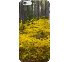 Algonquin Forest iPhone Case/Skin