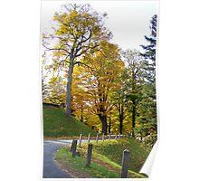 Walking through autumn Poster
