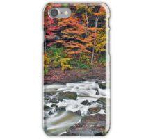 Autumn Rapids iPhone Case/Skin