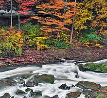 Autumn Rapids by Kenneth Keifer