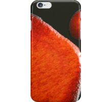 ebola plate glaze iv - photograph iPhone Case/Skin