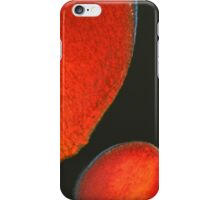 ebola plate glaze v - photograph iPhone Case/Skin