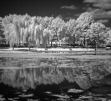 Reflections of the Past by Bernai Velarde