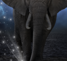 Power Is No Blessing In Itself (Protect the Elephants)  Sticker