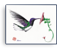 Precious - Hummingbird mixed media painting/drawing Canvas Print