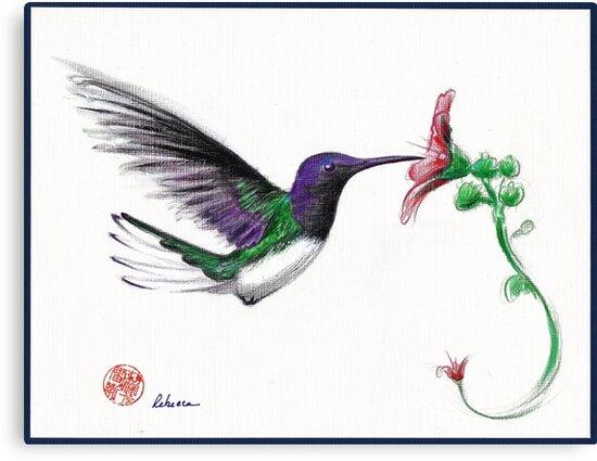 Precious - Hummingbird mixed media painting/drawing by Rebecca Rees