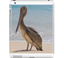 Brown Pelican iPad Case/Skin