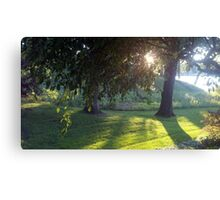 Beautiful Backyard Canvas Print