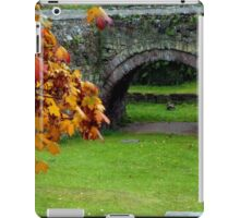 Roman Bridge in Autumn iPad Case/Skin