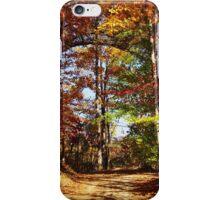 Autumn Path Through the woods iPhone Case/Skin