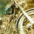 Triumph Gold by PictureNZ