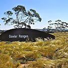 Gawler Ranges, South Australia by Ian Berry