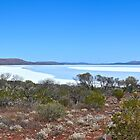 Lake Gairdner - with a little water in it by Ian Berry
