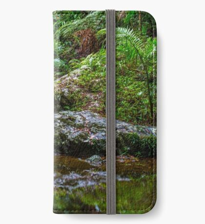 Stream of Reflection iPhone Wallet/Case/Skin