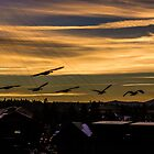 Geese Over Bend by Richard Bozarth