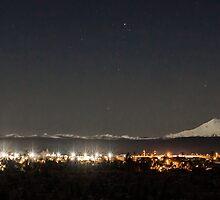 Moonlight over Redmond by Richard Bozarth