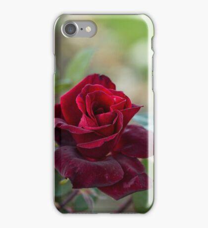 Rose of Autumn iPhone Case/Skin