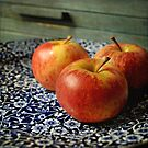 Red Apples. by Lyn  Randle