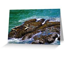 Party Rock/Oregon Greeting Card