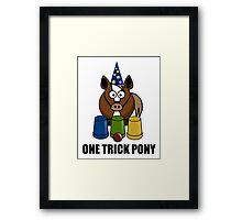 One Trick Pony Framed Print