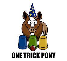 One Trick Pony Photographic Print
