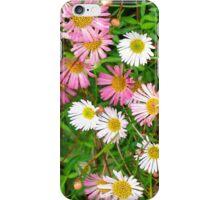 Pink Daisies iPhone Case/Skin