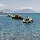 Díli Harbour by Werner Padarin