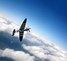 Spitfire Flight  by J Biggadike