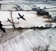 Winter Aces  by J Biggadike