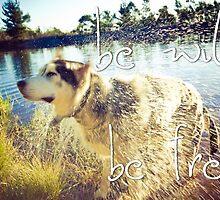 Be wild, be free! by lightwanderer