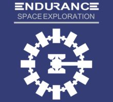 Interstellar - Endurance Space Craft by davidtoms