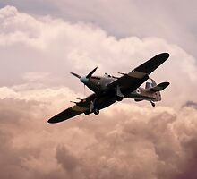 Warbirds - Hawker Hurricane  by J Biggadike