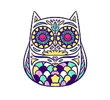 Pastel Owl Photographic Print