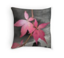 Last Leaves Of Autumn Throw Pillow