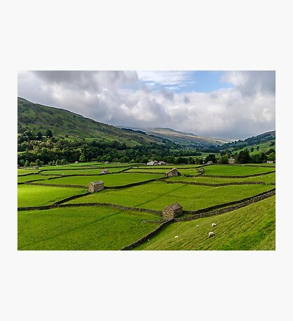 Swaledale Stone Barns Photographic Print