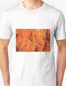 Mountain Ash Leaves - Autumn Unisex T-Shirt