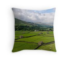 Swaledale Stone Barns Throw Pillow