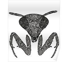 Praying Mantis Paisley design Poster