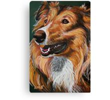 """My Best Friend"" Portrait of A Collie Canvas Print"