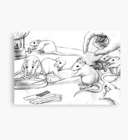 Rattus Lab Canvas Print