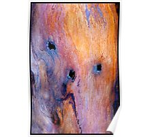 The Driftwood Picasso Poster