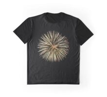 Forth of July Fireworks Graphic T-Shirt