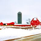 Winter on a Country Road by Nadya Johnson