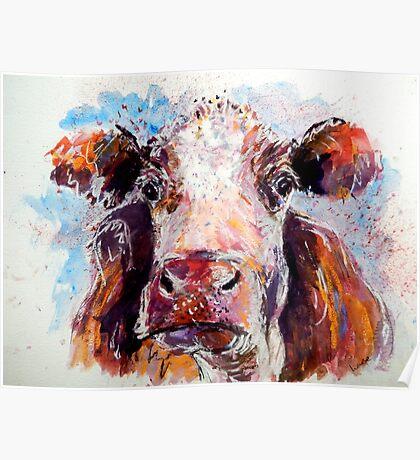 Sad Cow Poster