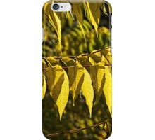 Golds Of Autumn iPhone Case/Skin