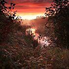 An Autumn Rise by Benjamin Tatrow