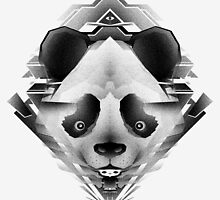 Evoking Panda by monobasica